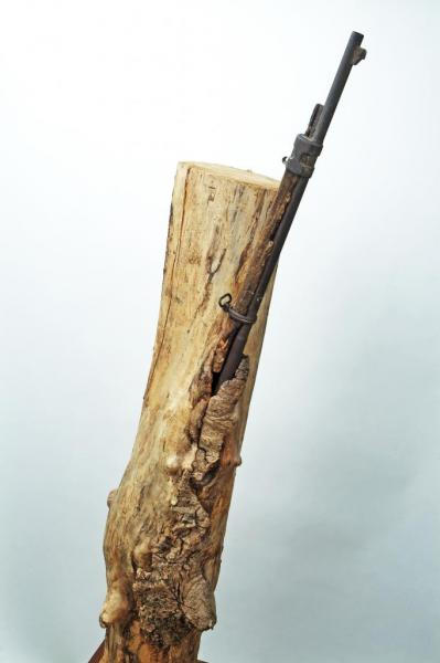 arbre gourmand au musée d'Argonne